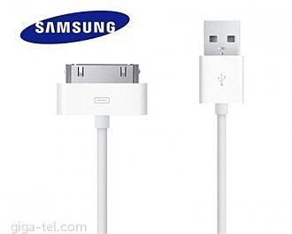 Galaxy Tab P30pin/USB