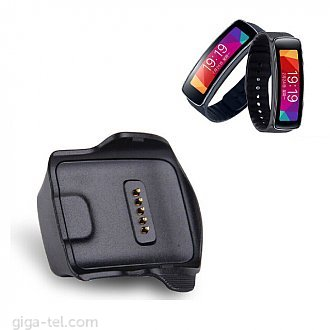 Samsung Galaxy Gear Fit / with cable